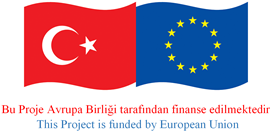 SME Hospital and European Network Project